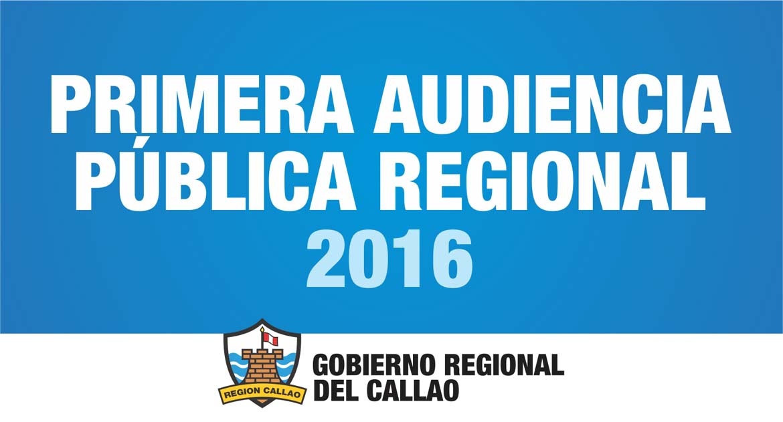 PRIMERA AUDIENCIA PÚBLICA 2016